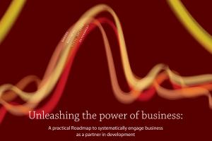 The Partnering Roadmap