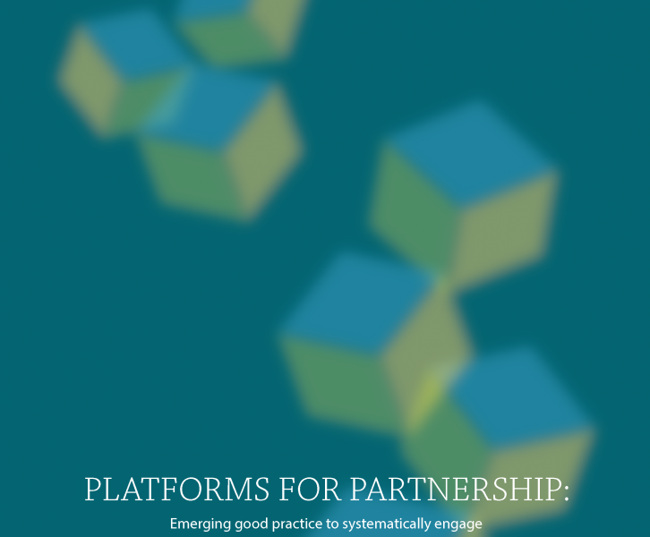 Platforms for Partnership: an essential mechanism to implement the SDGs
